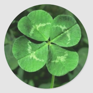 LUCKY FOUR LEAF CLOVER STICKERS