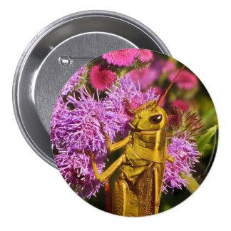 Lucky Grasshopper on Ageratum Pinback Button