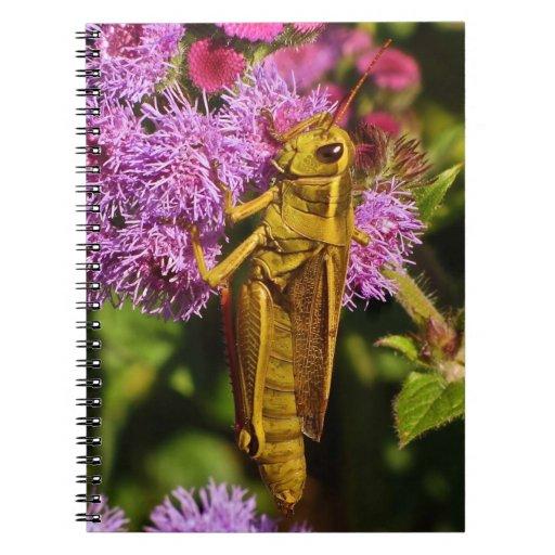 Lucky Grasshopper on Ageratum Spiral Notebook