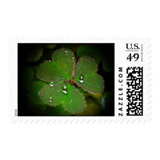 Lucky in Love Postage