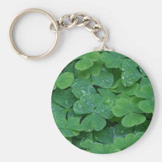 Lucky Irish Shamrocks Basic Round Button Keychain