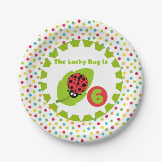 Lucky Ladybug 6th Birthday Paper Plates