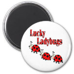 Lucky Little Ladybugs 2 Inch Round Magnet