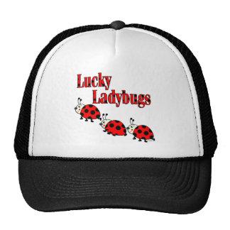 Lucky Little Ladybugs Mesh Hats