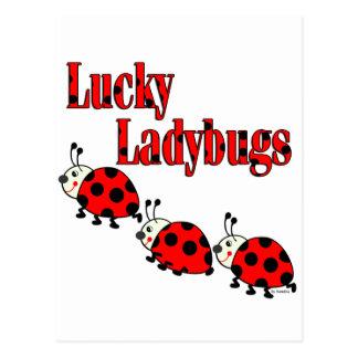 Lucky Little Ladybugs Postcard