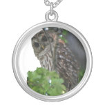 Lucky Owl Silver Plated Necklace