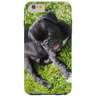 Lucky Pug I-Phone 6 Case