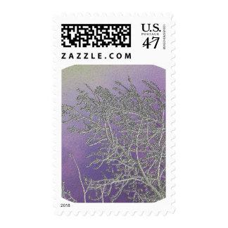 Lucky Purple n Silver Streaks V5 Postage