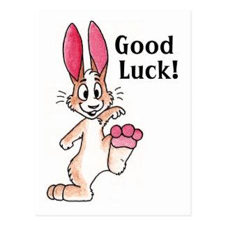 Lucky Rabbit Postcard