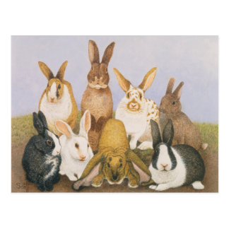 Lucky rabbits postcard