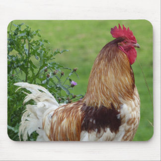 Lucky rooster mouse pad