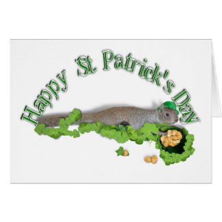 Lucky Squirrel With Pot Of Gold Cards