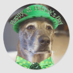 Lucky St Patrick's Day Doggie Stickers