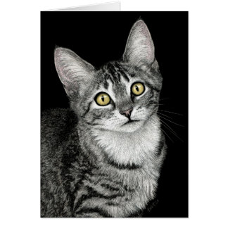 """Lucky Star"" Tabby Kitten Card"