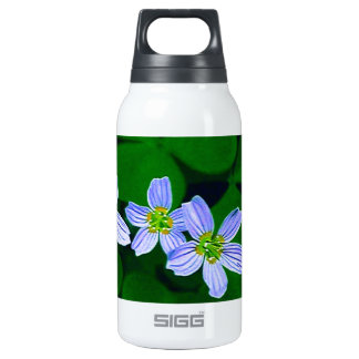 Lucky Three Thermos Bottle