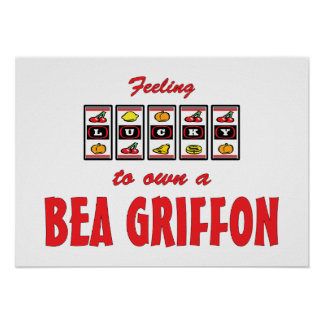 Lucky to Own a Bea Griffon Fun Dog Design Posters