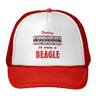 Lucky to Own a Beagle Fun Dog Design Mesh Hat