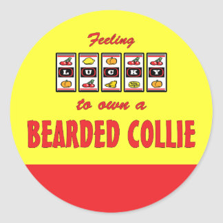 Lucky to Own a Bearded Collie Fun Dog Design Round Sticker