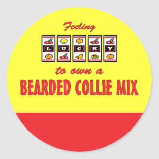 Lucky to Own a Bearded Collie Mix Fun Dog Design Round Stickers
