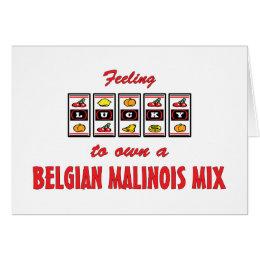 Lucky to Own a Belgian Malinois Mix Fun Dog Design Card