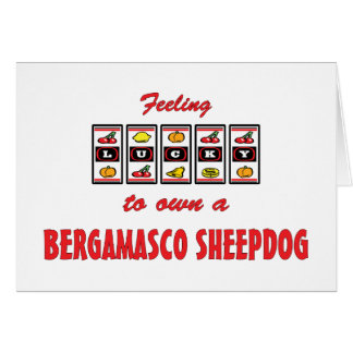 Lucky to Own a Bergamasco Sheepdog Fun Dog Design Cards