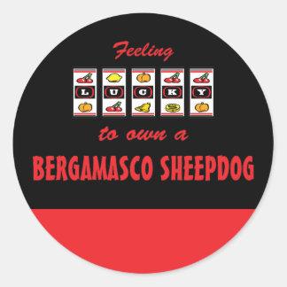 Lucky to Own a Bergamasco Sheepdog Fun Dog Design Classic Round Sticker