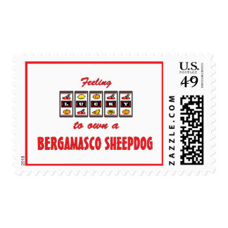 Lucky to Own a Bergamasco Sheepdog Fun Dog Design Postage Stamps