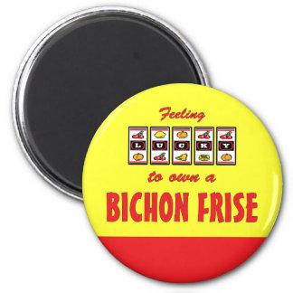 Lucky to Own a Bichon Frise Fun Dog Design Refrigerator Magnet