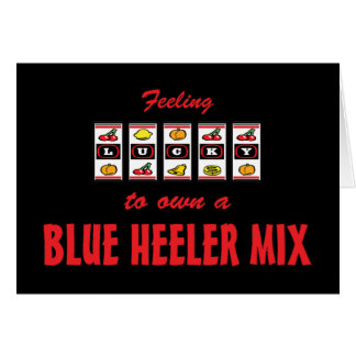 Lucky to Own a Blue Heeler Mix Fun Dog Design Greeting Card