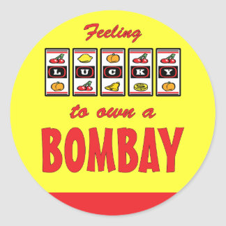 Lucky to Own a Bombay Fun Cat Design Classic Round Sticker