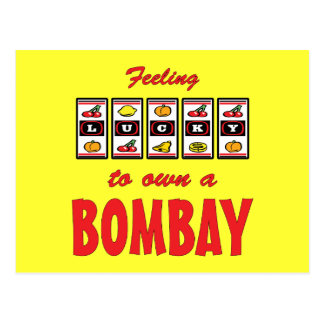Lucky to Own a Bombay Fun Cat Design Postcard