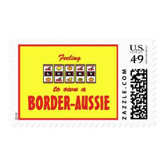 Lucky to Own a Border-Aussie Fun Dog Design Stamp