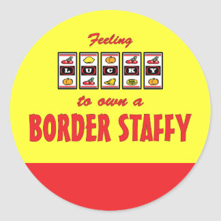 Lucky to Own a Border Staffy Fun Dog Design Classic Round Sticker