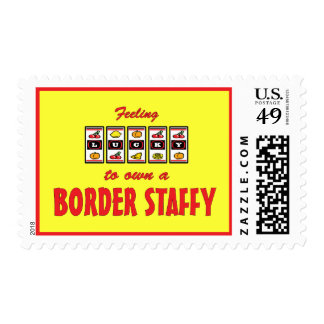 Lucky to Own a Border Staffy Fun Dog Design Postage Stamps
