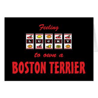 Lucky to Own a Boston Terrier Fun Dog Design Card