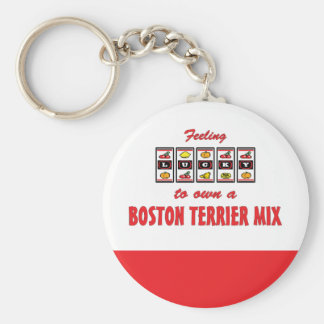 Lucky to Own a Boston Terrier Mix Fun Dog Design Keychain