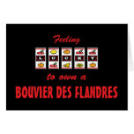 Lucky to Own a Bouvier des Flandres Fun Dog Design Greeting Card