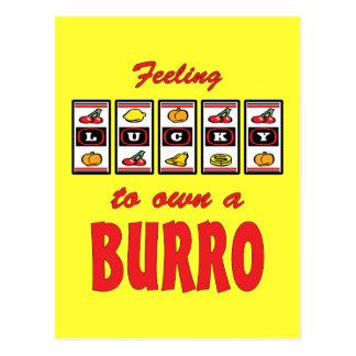 Lucky to Own a Burro Fun Burro Design Postcard
