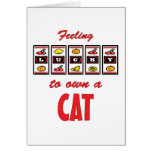 Lucky to Own a Cat Fun Cat Design Cards