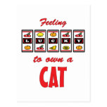 Lucky to Own a Cat Fun Cat Design Postcards