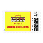 Lucky to Own a Catahoula Leopard Dog Fun Design Postage