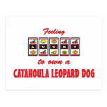 Lucky to Own a Catahoula Leopard Dog Fun Design Post Card