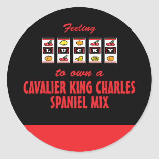 Lucky to Own a Cavalier King Charles Spaniel Mix Classic Round Sticker