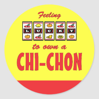 Lucky to Own a Chi-Chon Fun Dog Design Classic Round Sticker
