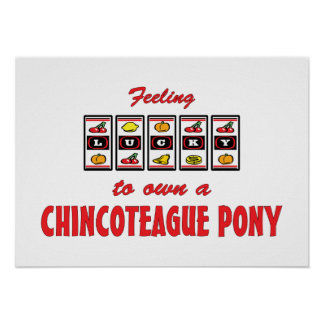 Lucky to Own a Chincoteague Pony Fun Design Poster