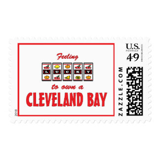 Lucky to Own a Cleveland Bay Fun Horse Design Postage Stamps