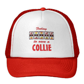 Lucky to Own a Collie Fun Dog Design Hats