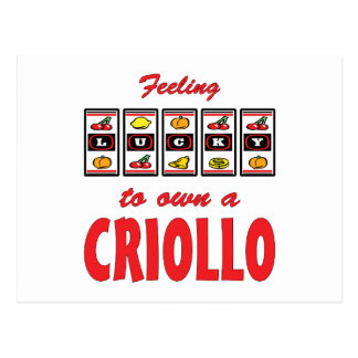 Lucky to Own a Criollo Fun Horse Design Postcard