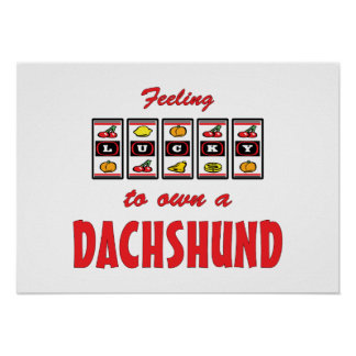 Lucky to Own a Dachshund Fun Dog Design Posters
