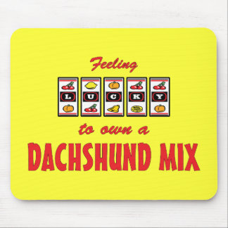 Lucky to Own a Dachshund Mix Fun Dog Design Mouse Pad